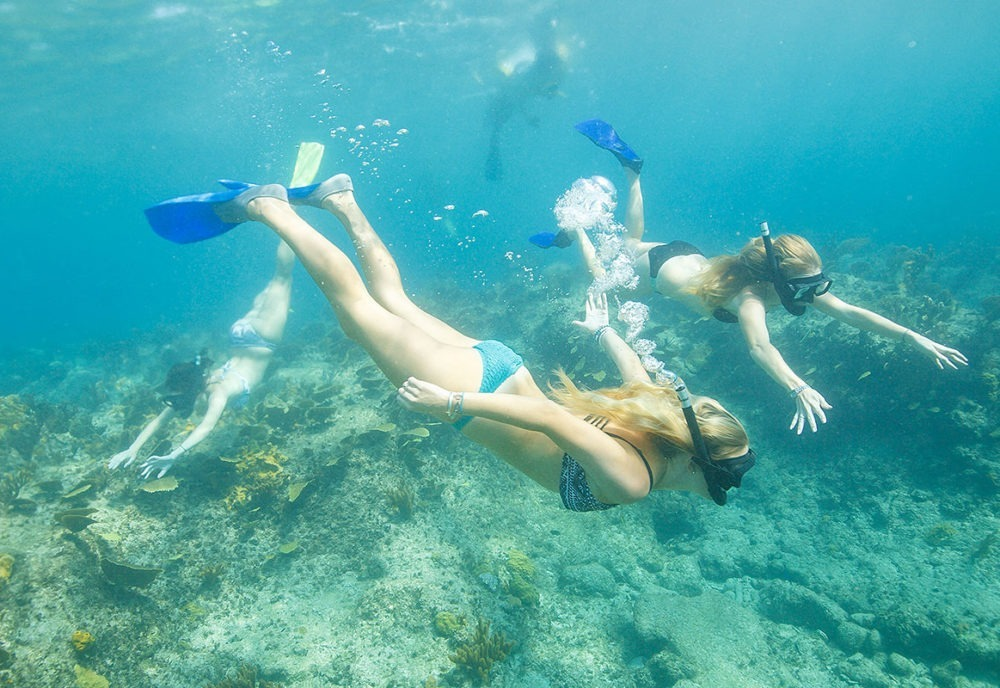 Snorkeling Tour in Turks and Caicos Island